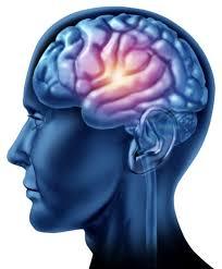 Le neuroscienze e la Regolazione affettiva.