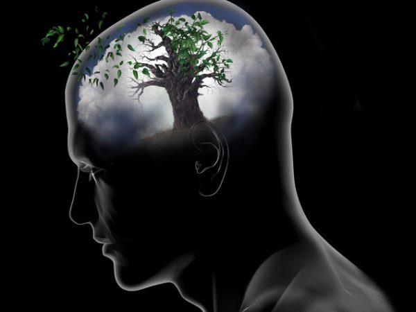 Coscienza e regolazione affettiva.